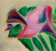 Red Calla Lily (Z. aethiopica) by JNnucifera