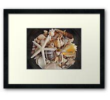 Shells In Bowl Framed Print
