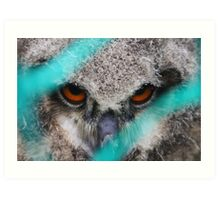 eyes of fire, young bird of prey portrait design Art Print