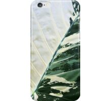 Alocasia Araceae iPhone Case/Skin