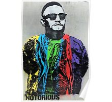 Notorious Conor McGregor  Poster