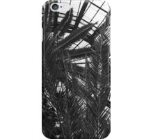 Bell Isle Conservatory Dome 1 BW iPhone Case/Skin