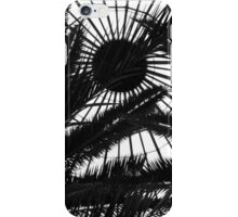 Bell Isle Conservatory Dome 2 BW iPhone Case/Skin