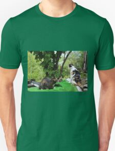 Are You Going to Play With Me or Should I Jump on You Anyway! Unisex T-Shirt
