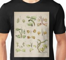 The botany of the Antarctic voyage of H M  discovery ships Erebus and Terror in the Years 1839 1843 Joseph Dalton Hooker V1 140 Unisex T-Shirt