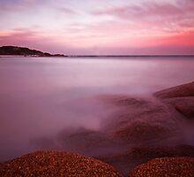 The last rays of sun Tasmania 3 by Imi Koetz