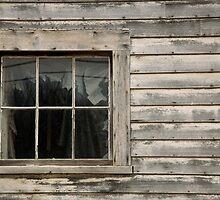 The Window  by John  Kapusta