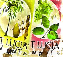 St Lucia by tvlgoddess