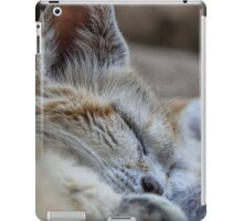 Sleeping sand dune cat iPad Case/Skin