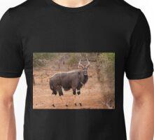 Nyala, Kruger National Park, South Africa Unisex T-Shirt
