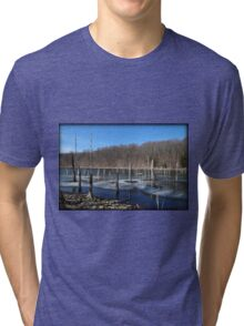 Late Winter Color Thaw Tri-blend T-Shirt