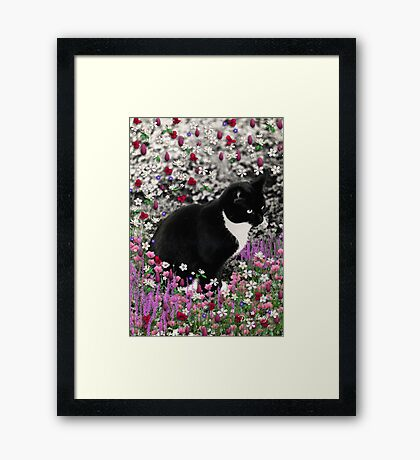 Freckles in Flowers II - Tuxedo Cat Framed Print