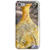 Mexican Pottery iPhone Case/Skin