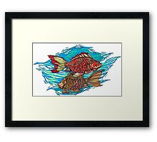 Fish - colored Framed Print
