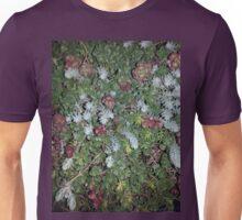 Sedum Succulents Unisex T-Shirt