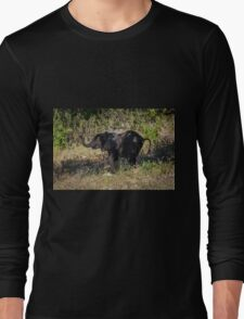 Baby elephant appearing to dance down slope Long Sleeve T-Shirt