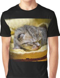 Newborn Kitten Graphic T-Shirt
