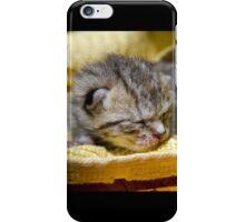Newborn Kitten iPhone Case/Skin