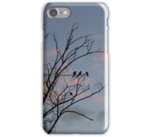 Black Birds iPhone Case/Skin