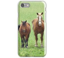 Draft Horse Trio  iPhone Case/Skin