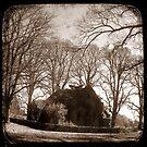 Gostwyck Chapel - New England, New South Wales, Australia by Kitsmumma