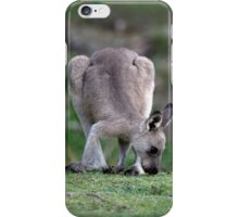 Grazing Kangaroo iPhone Case/Skin