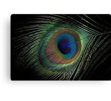 Peacock feather macro Canvas Print
