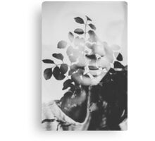 august song Canvas Print