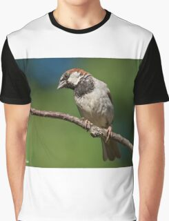 Male House Sparrow Perched in a Tree Graphic T-Shirt