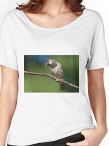 Male House Sparrow Perched in a Tree Women's Relaxed Fit T-Shirt