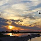 Sunset at Kings Park Bluff by Gilda Axelrod