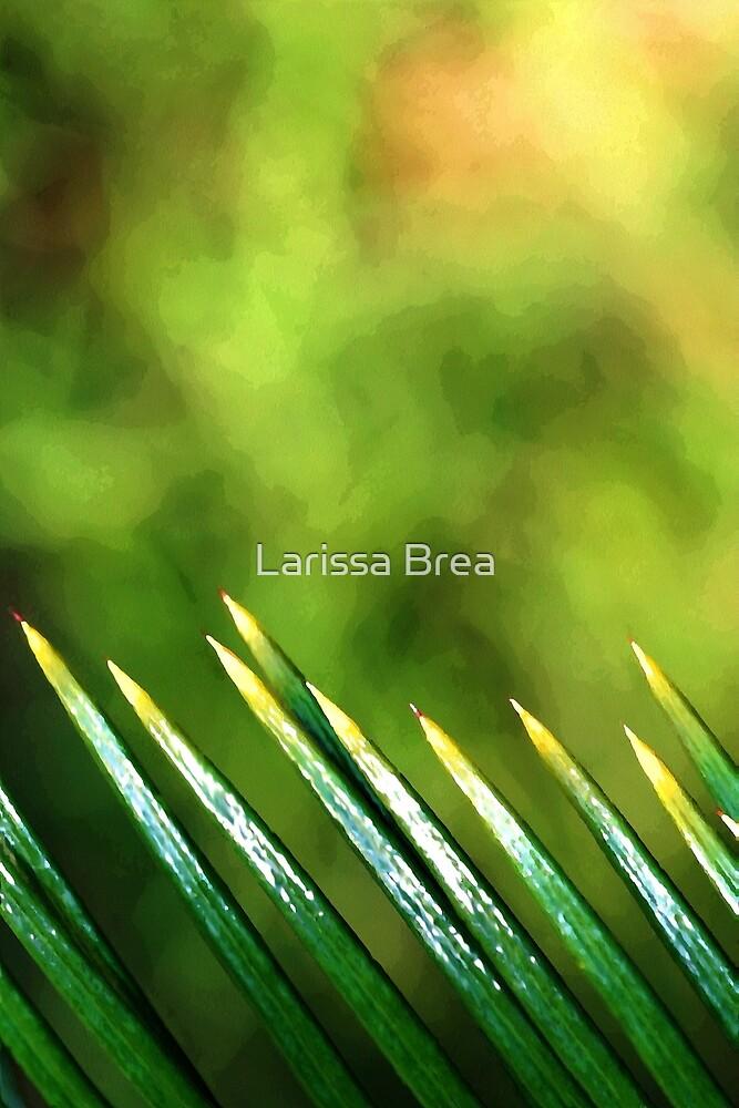 Going West by Larissa Brea