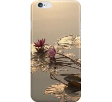 Water Lillies on Siem Reap river iPhone Case/Skin