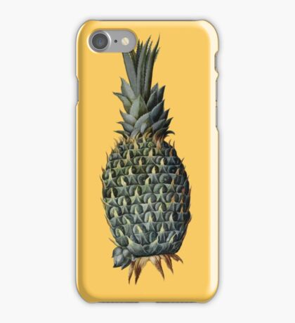 Pineapple (16th century) iPhone Case/Skin