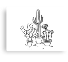 Hand Drawn Cacti Canvas Print