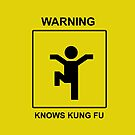 Kung Fu by Stevie B