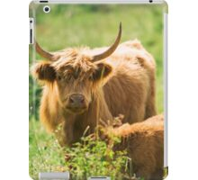 Country Cows  iPad Case/Skin