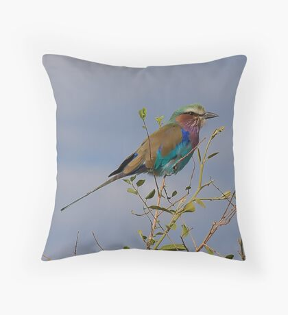 Lilac Breasted Roller Botswana Throw Pillow