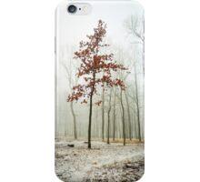 I Keep my Dress on iPhone Case/Skin