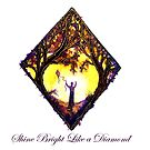 Shine Bright Like a Diamond by Linda Callaghan