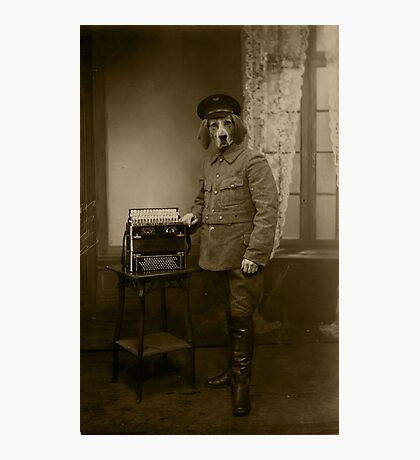 Old War Dog Photographic Print
