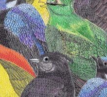 Birds Birds Birds Sticker