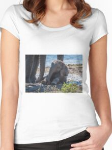 Baby elephant sitting in mud beside mother Women's Fitted Scoop T-Shirt