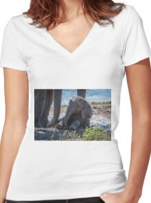 Baby elephant sitting in mud beside mother Women's Fitted V-Neck T-Shirt