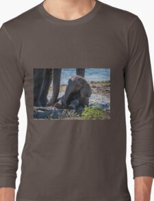 Baby elephant sitting in mud beside mother Long Sleeve T-Shirt
