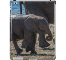 Baby elephant walking with mother beside river iPad Case/Skin