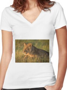 Close-up of lion lying in golden light Women's Fitted V-Neck T-Shirt