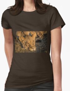 Close-up of sleepy lion staring at camera Womens Fitted T-Shirt