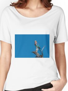 Lilac-breasted roller looking up from dead branch Women's Relaxed Fit T-Shirt
