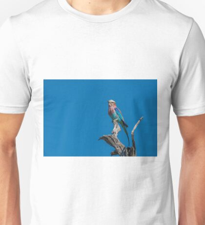 Lilac-breasted roller looking up from dead branch Unisex T-Shirt